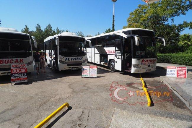 Автобус из Анталии в Фетхие
