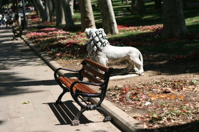 Найти свободную скамейку можно всегда