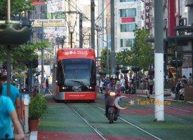 Трамвай AntRay