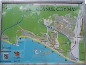 Карта Гёйнюка